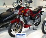 2007-10-24-01.JPG